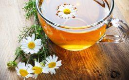 Trà hoa cúc chữa nổi mề đay hữu hiệu