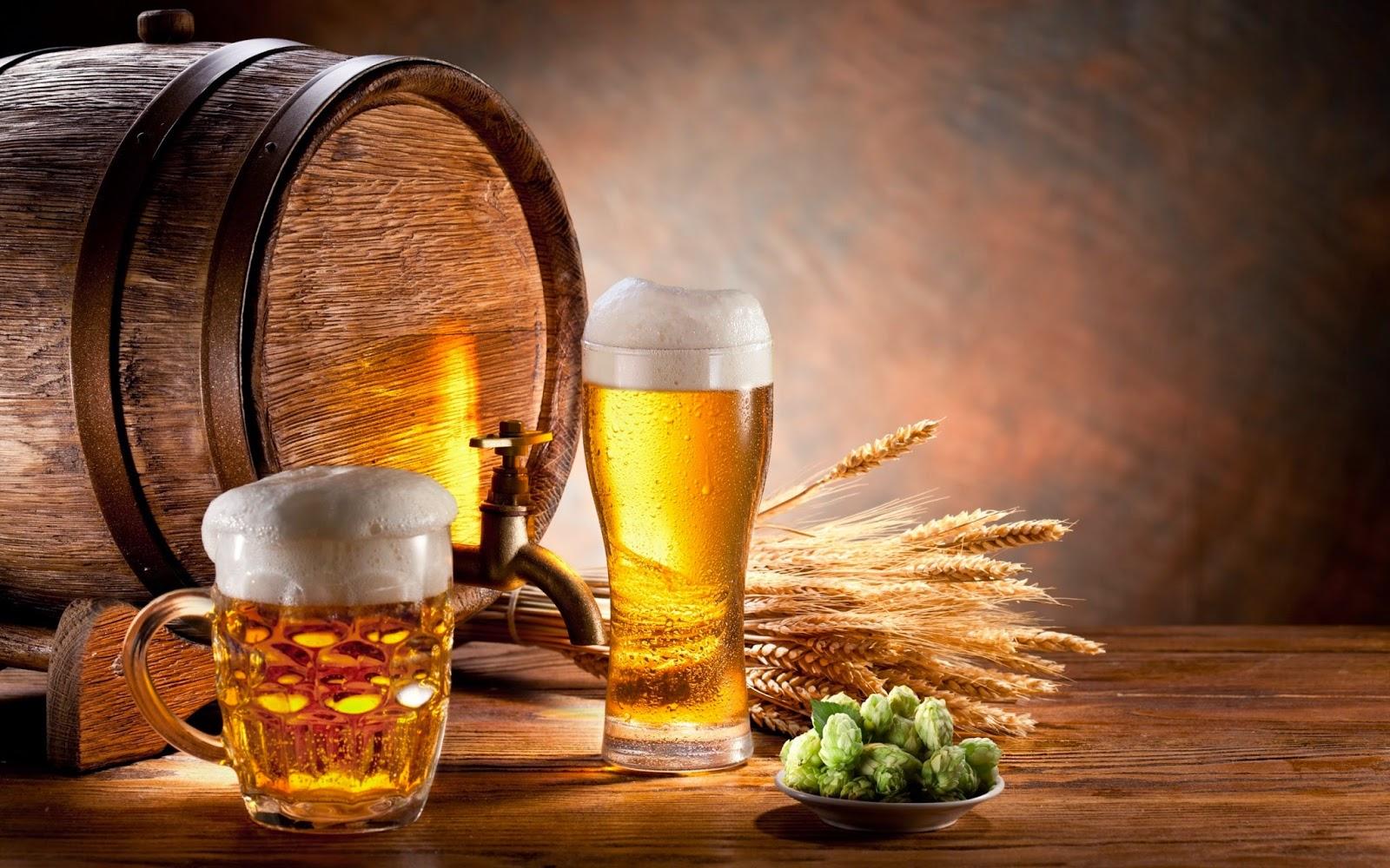 Bia thực phẩm chứa Gluten